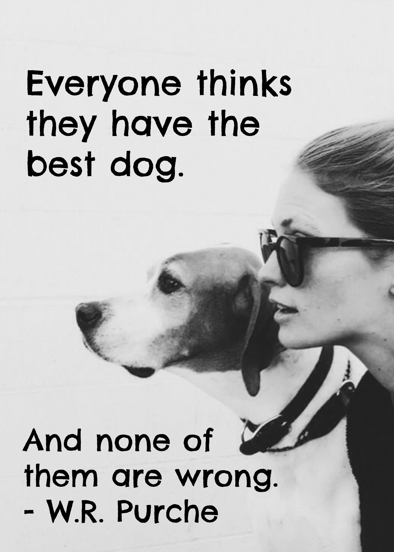 Quotes About Dog Friendship 2016 June Vip Newsletter  Welcome To The Pets Hotel  Dog Cat