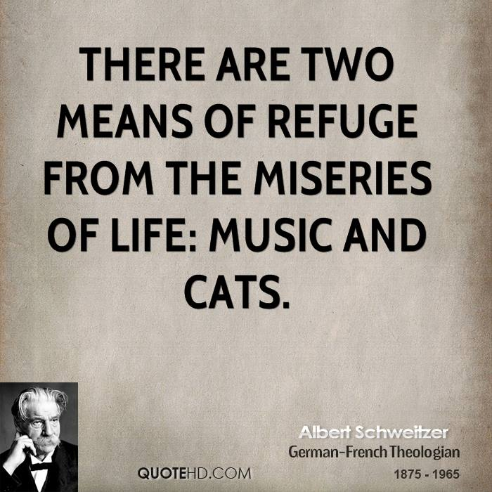 albert-schweitzer-pet-quotes-there-are-two-means-of-refuge-from-the