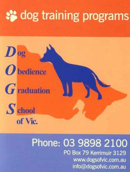In House Training Dog Cat Pet Accomodation Boarding Kennels